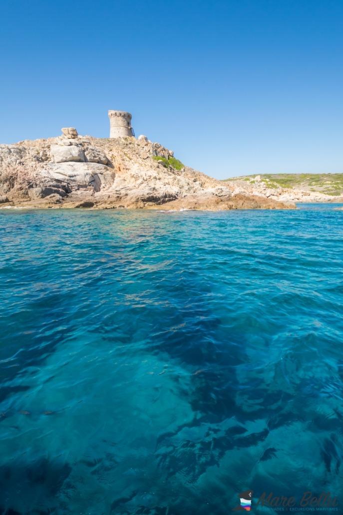 Tour d'Omigna Cargèse promenade en mer